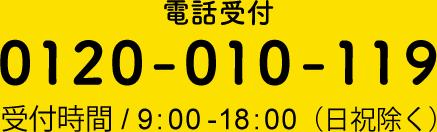 0120-010-119